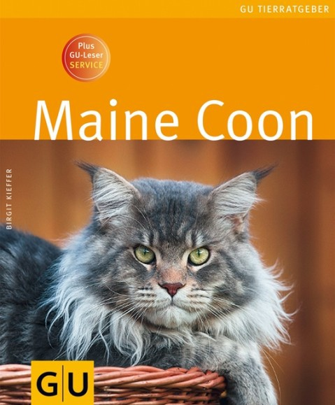 """Maine Coon"""